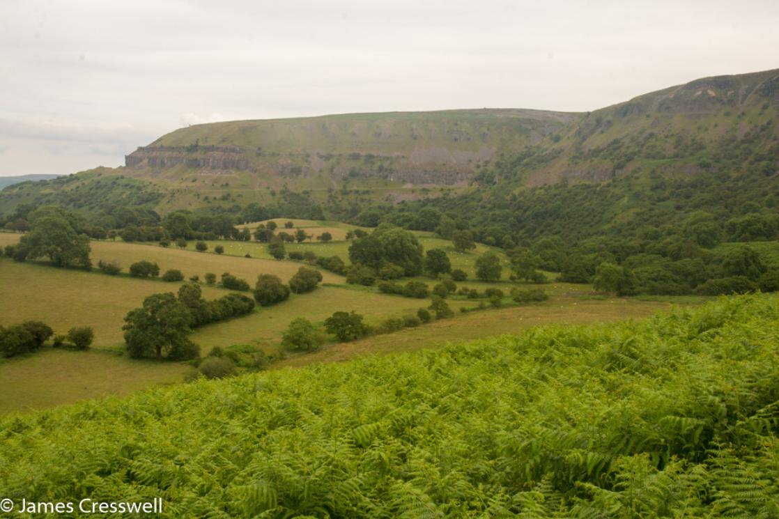 Craig-y-Cilau National Nature Reserve, on Llangattock Escarpment